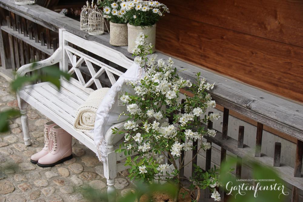 Gartenfenster Outdoor Garten-10.jpg