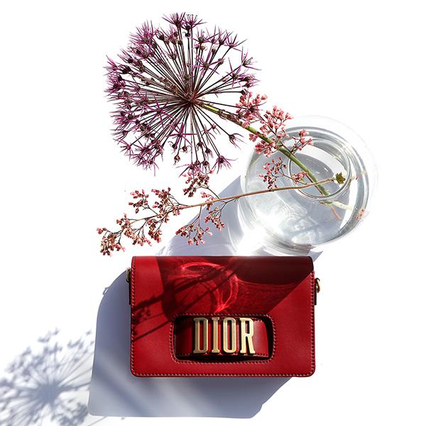 dior-bag-on-table-593127f51b67d.jpg