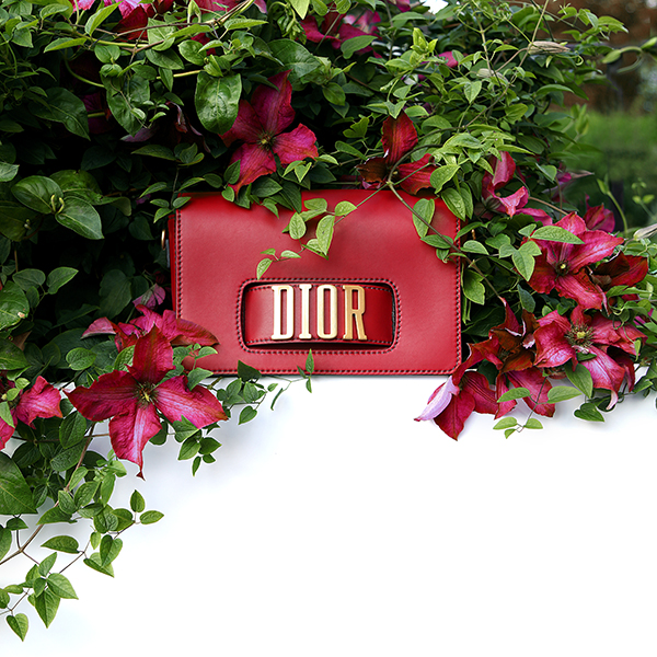 dior-bag-with-clematis-59312807294ca.jpg
