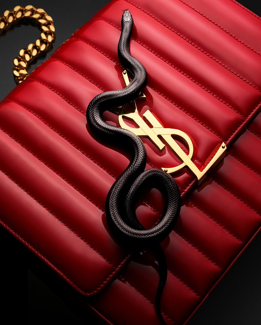 YSL RED BAG SNAKE.jpg