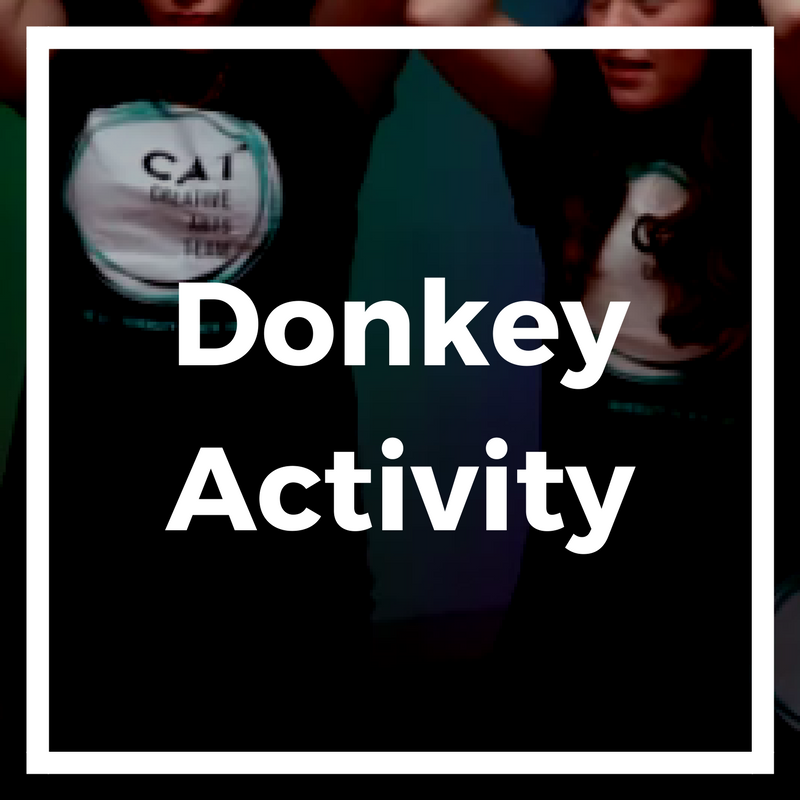 Donkey Activity(1).png