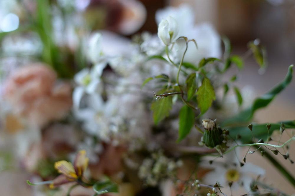 ikoflower_spring_6_opt.jpg
