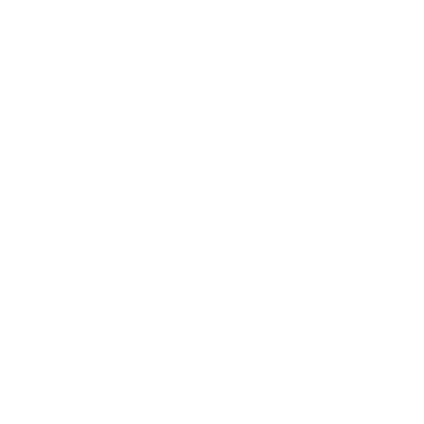The Salt Co.