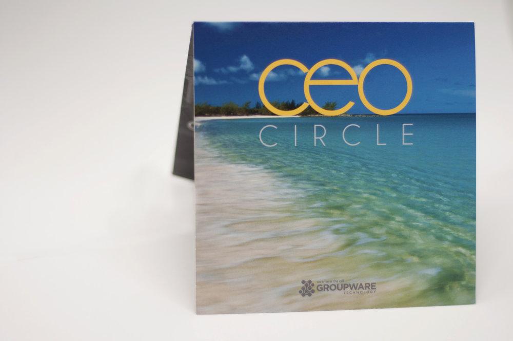 CEO 1.jpg