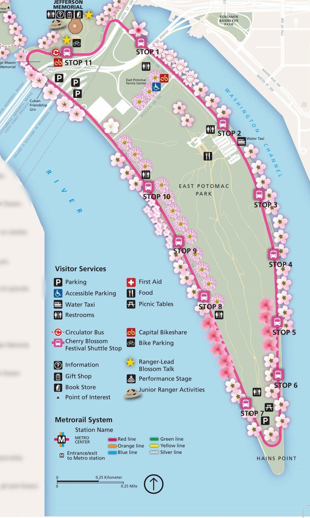 National Cherry Blossom Festival Tips and Tricks Urban Atlas