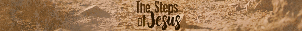 The Steps of Jesus Strip.png