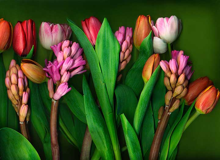 Spring-Bouquet(lowres).jpg
