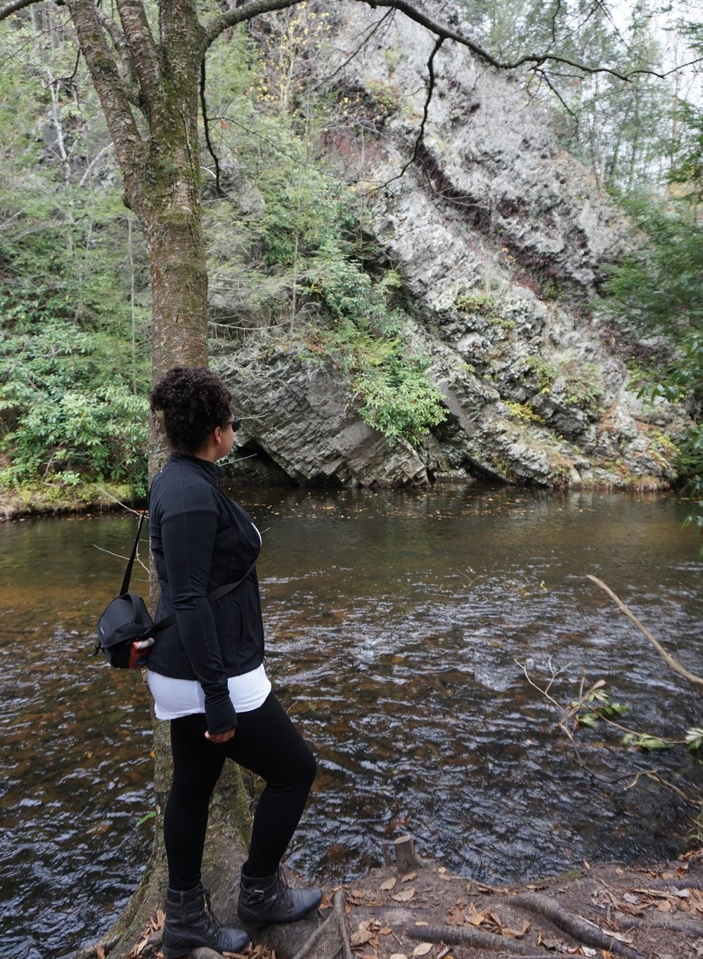 Hawk Falls trail in Hickory Run State Park