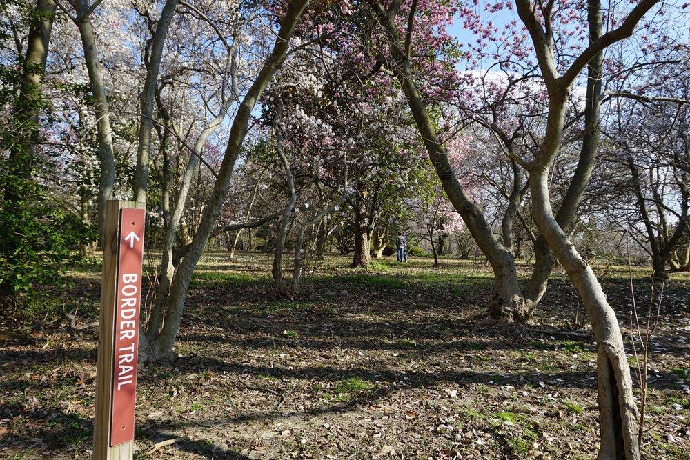 Cylburn Arboretum Baltimore.JPG