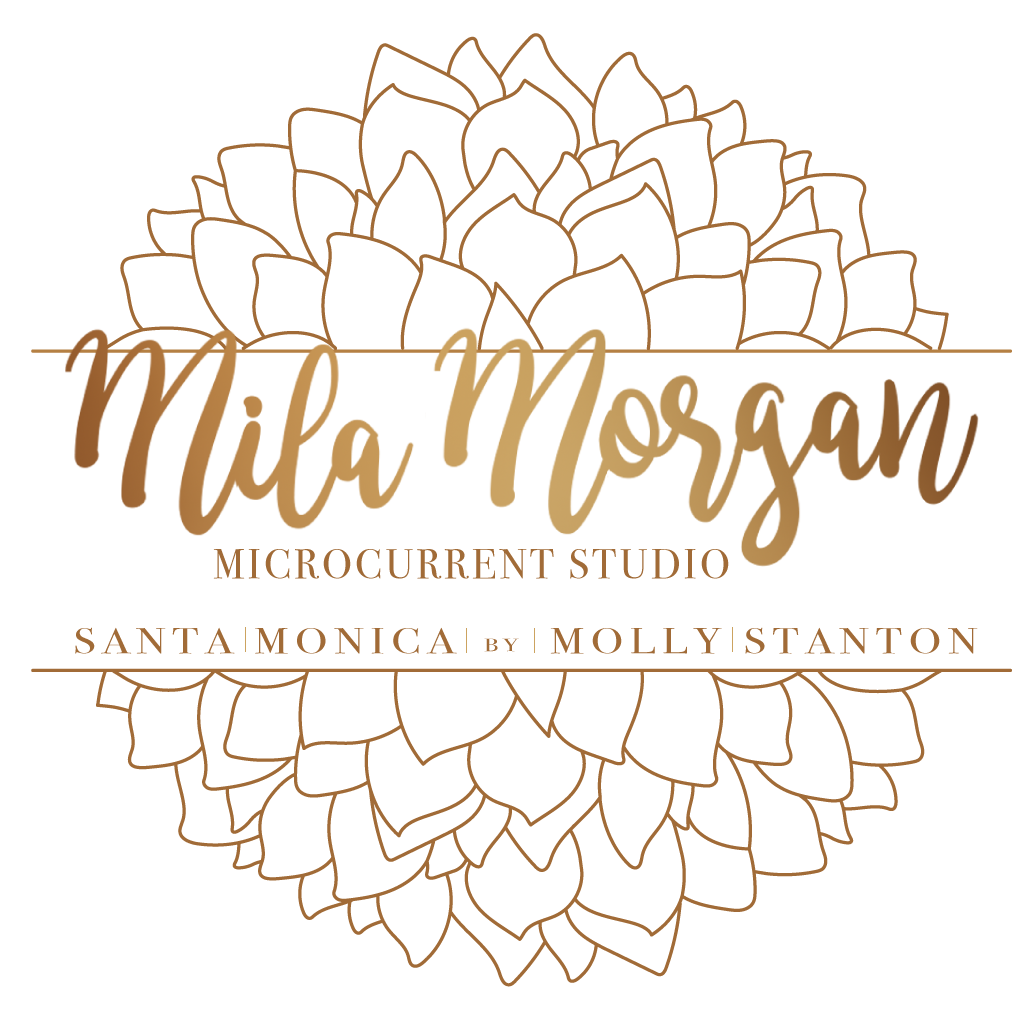 Mila Morgan Studio-Santa Monica by Molly Stanton