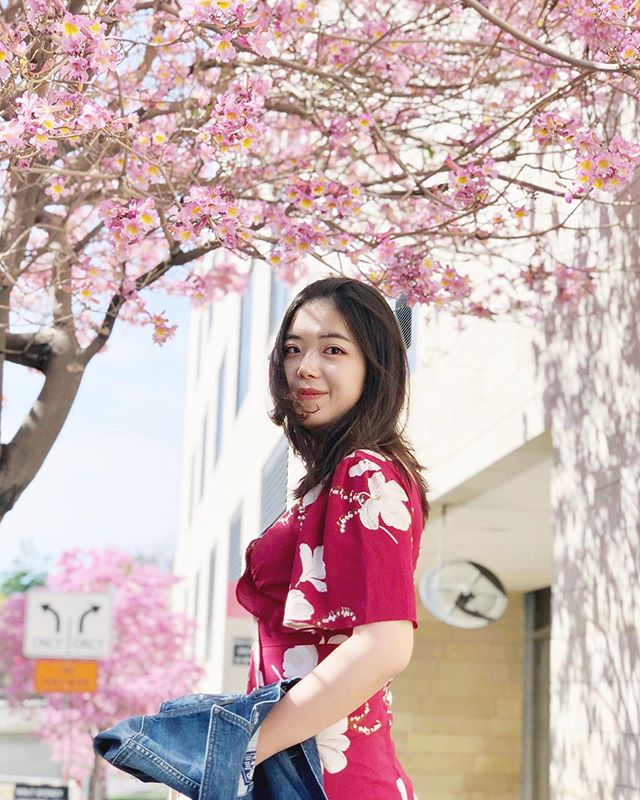 Spring is here🌸 Credit to @w____jy ♥️