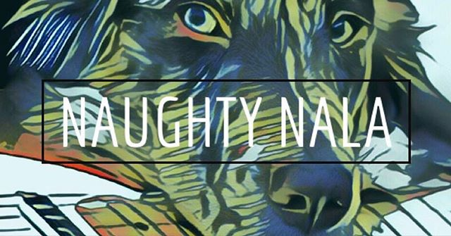 Debut album from Naughty Nala: Someday. Available Now!⠀ ⠀ NaughtyNalaBand.com ⠀ @SoundStudio412 ⠀ ⠀ #Studio412 #music #Newmusic #originalmusic #piano #rock #altrock