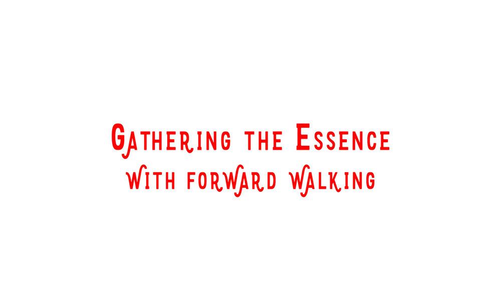 GatheringEssence2.jpg