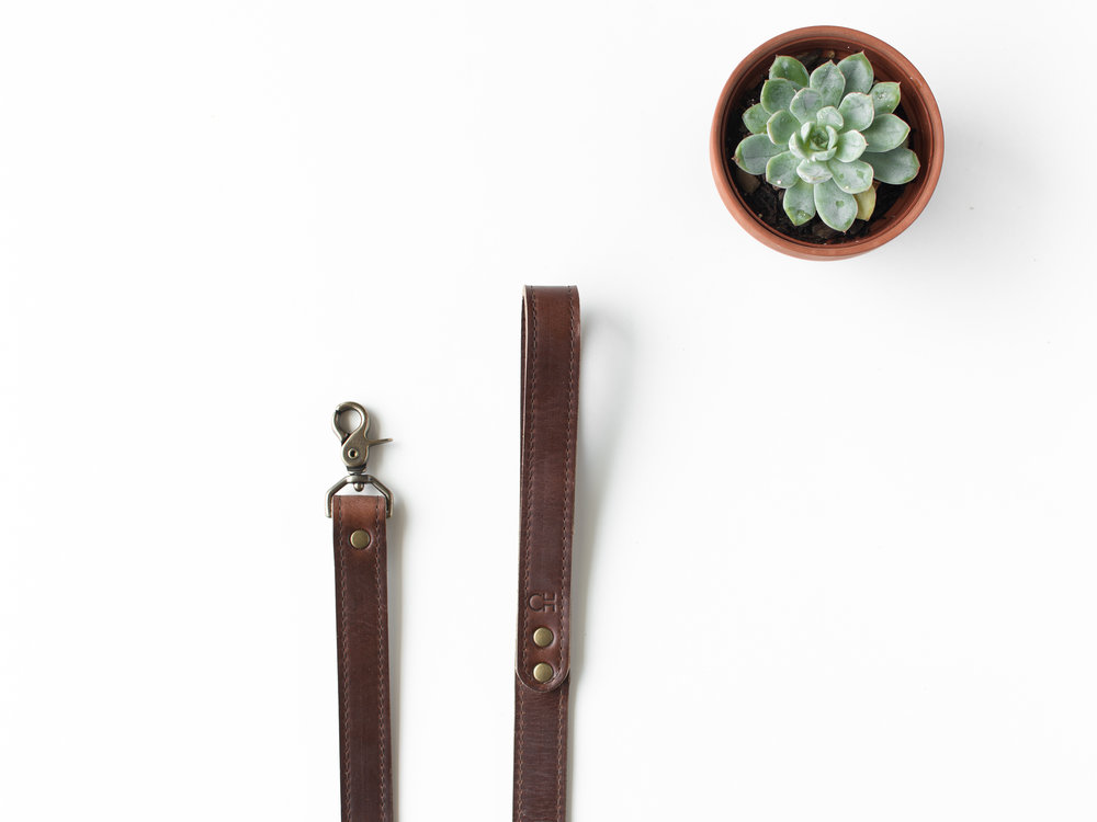 brown leather dog leash.jpg