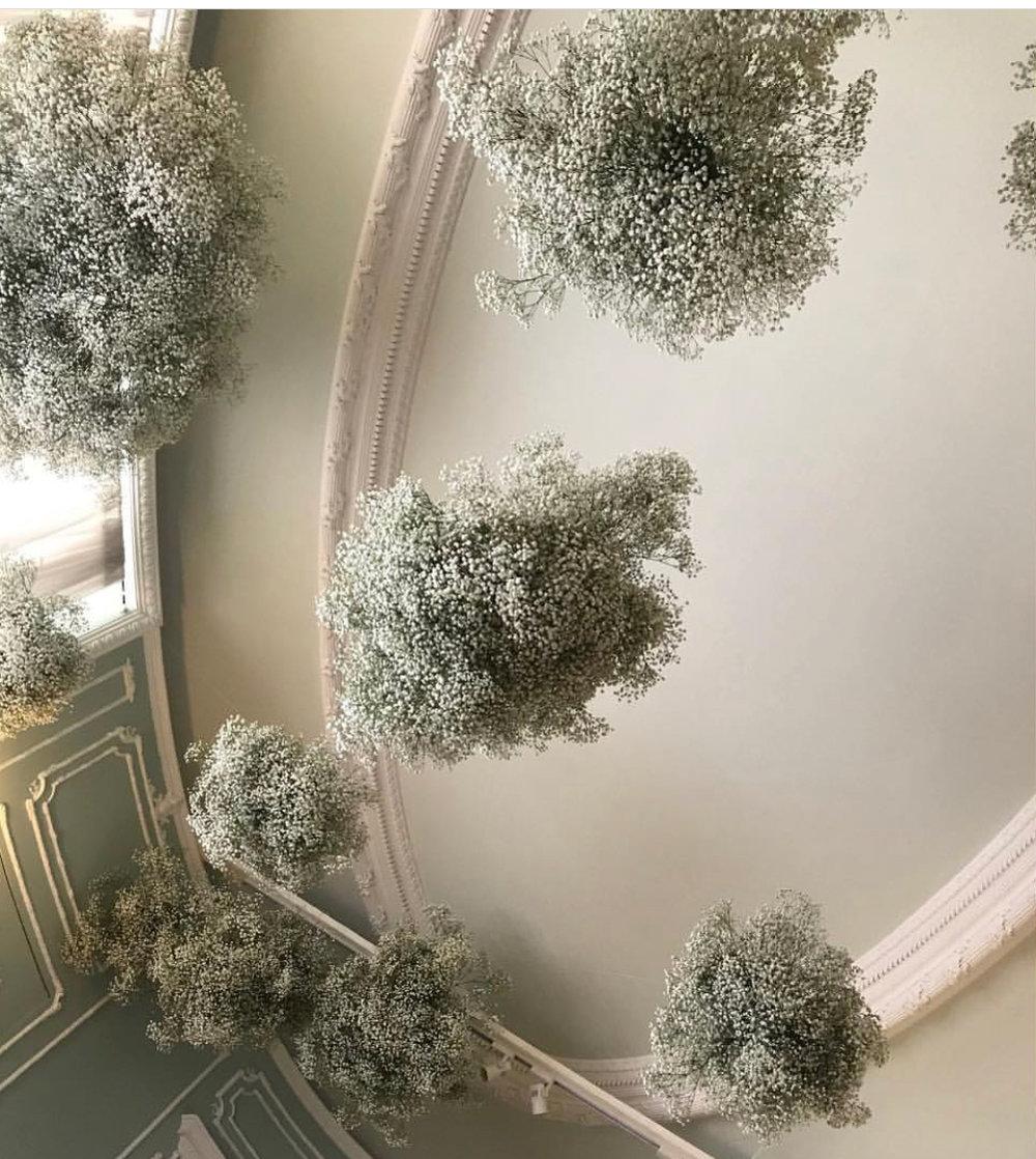Floral installation by  Aurora Botanica