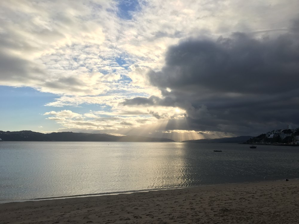 Oriental Bay.... my little piece of paradise and home base.