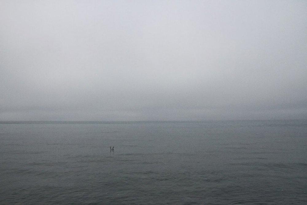 Dungeness-Spit-5.jpg