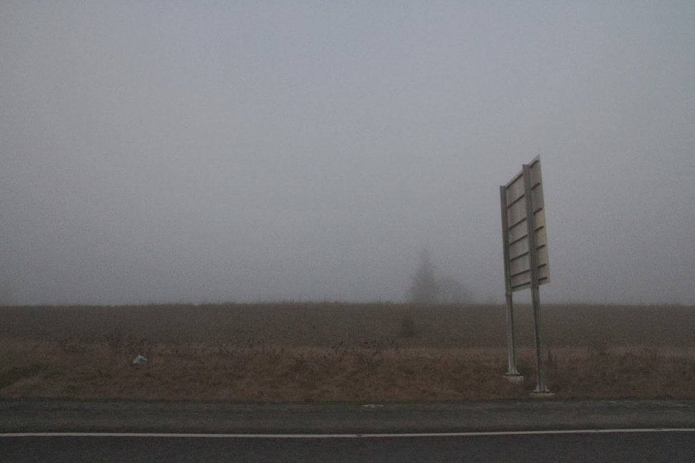 Dungeness-Spit-9.jpg