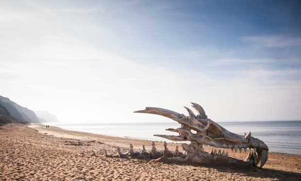 giant_dragon_skull_appears_on_beach.jpg