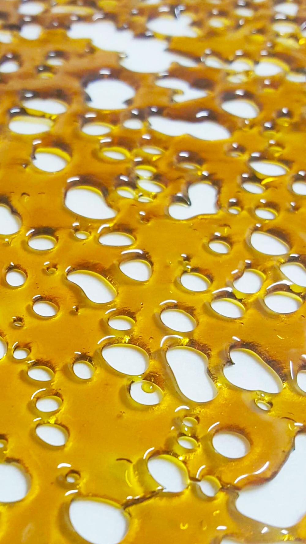 HONEY_GLASS_BHO_Shatter.png