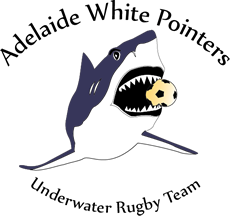 Adelaide White Pointers