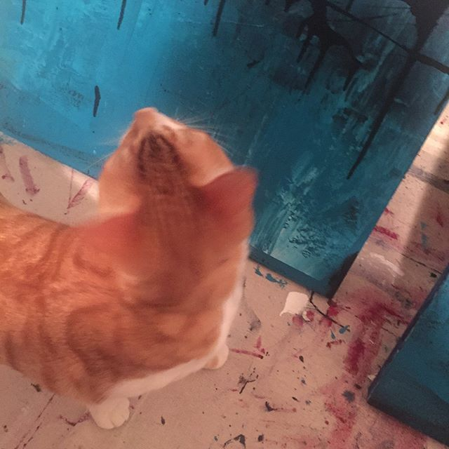 My very own little furry art critic checking out my latest works in progress. Seems like he was more interested with the back than the front!! Oh well. Can't please everyone 😂#artisticcat