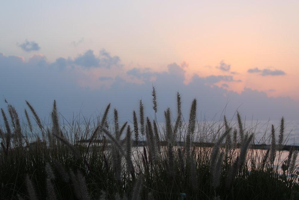 Solnedgång vid Gan Ha'Atzamaut