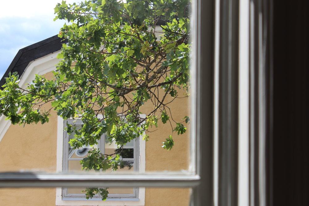 Utsikt från vårt rum på Schenströmska