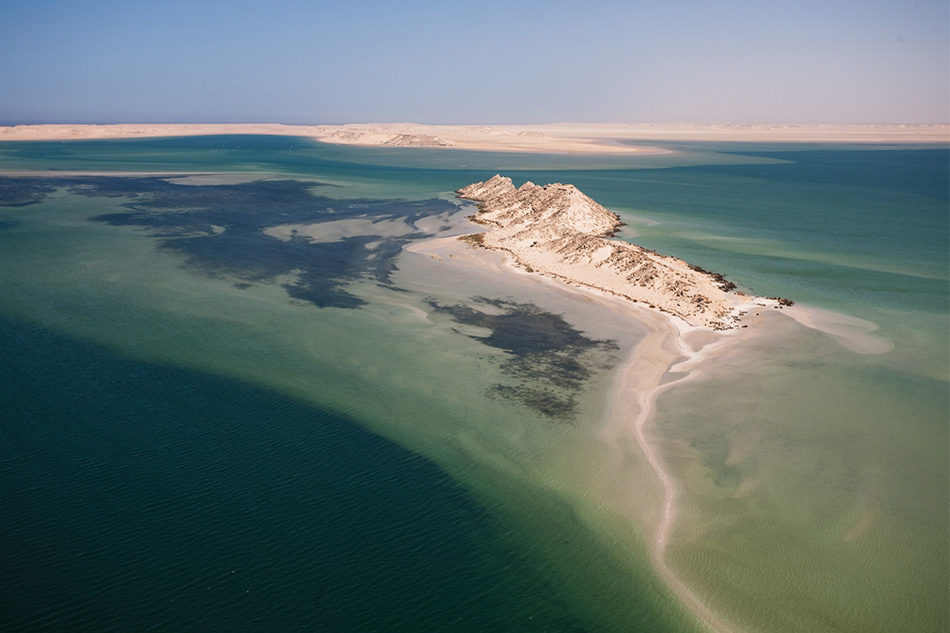 1:30pm : Take an afternoon run or adventure -quadbikes, oyster farms, camels and dragon island. -