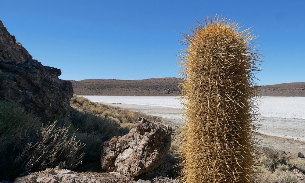 Scenic views in the heart of Uyuni