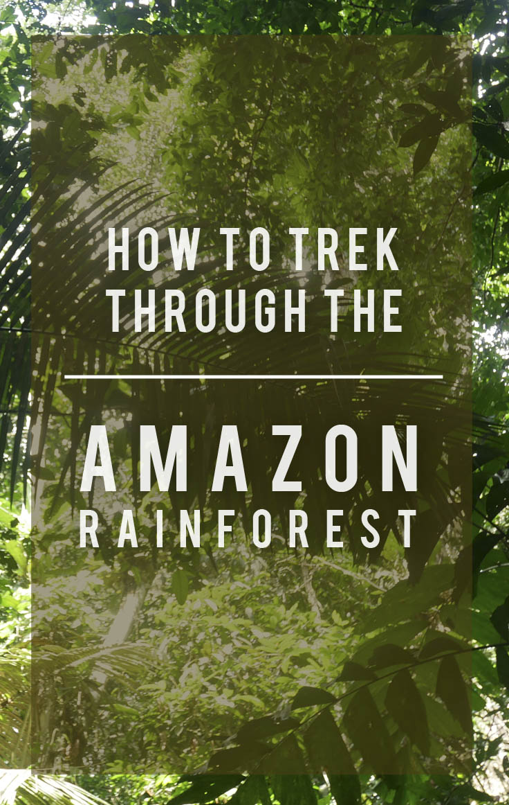 How To Trek Through the Amazon Rainforest |