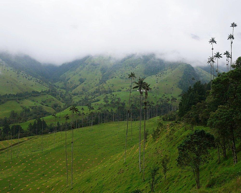 COLOMBIA - coffee, coastlines and coconuts