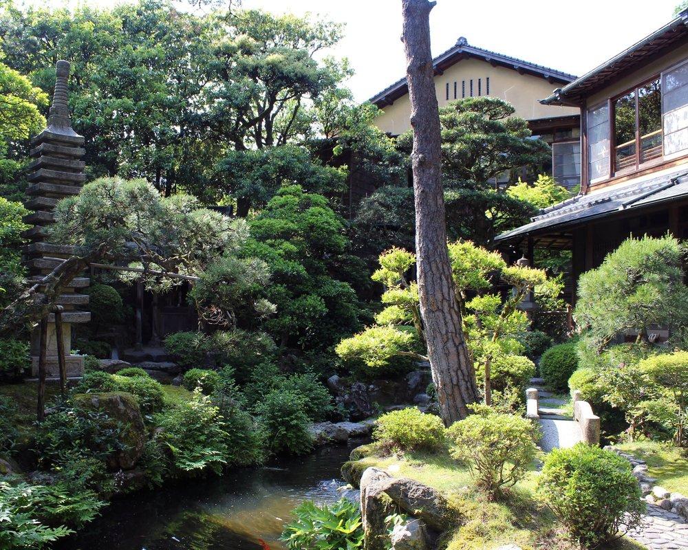 The ryokan's koi pond and garden