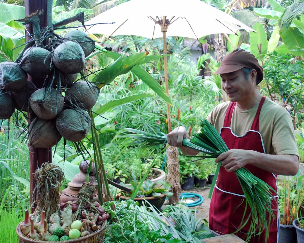 Sammy showing us the ins and outs of lemongrass in his Chiang Mai cooking class