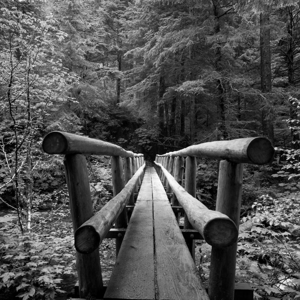 a Bridge.jpg