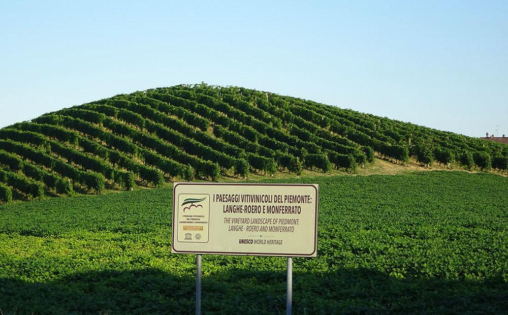 Colinas no Monferrato