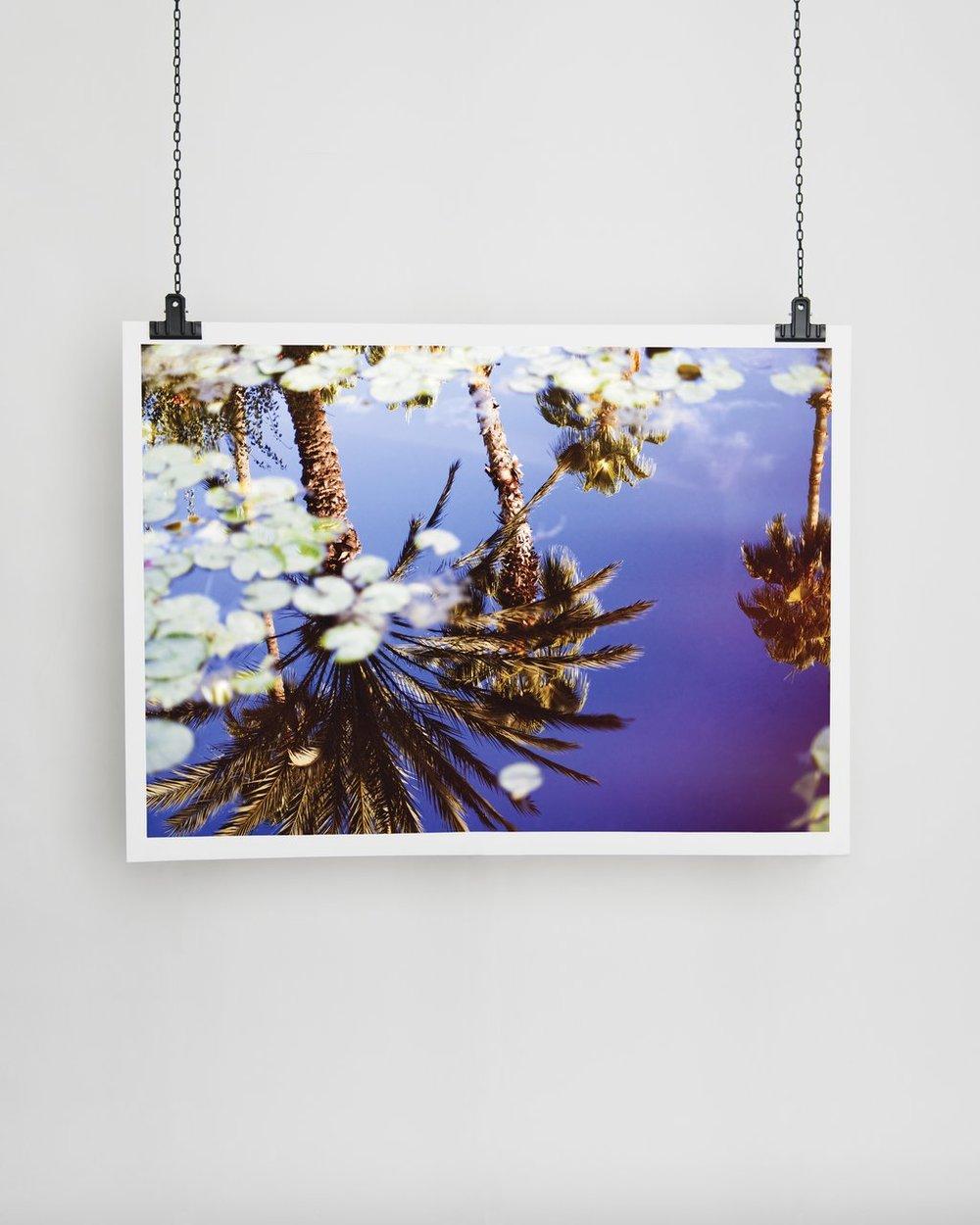 YSL PALM TREES   Julia-Rosa Reis  70x100 cm  €331.27 EUR