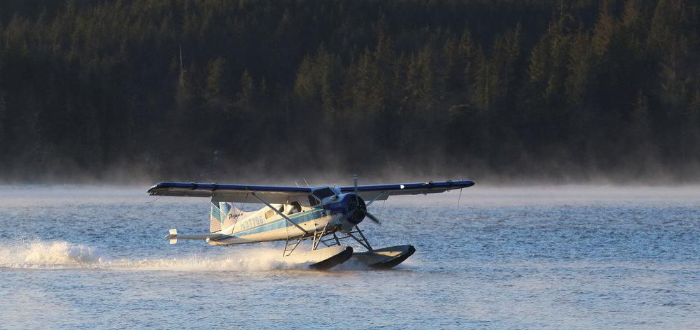 DeHavilland Beaver landing Thorne Bay Alaska