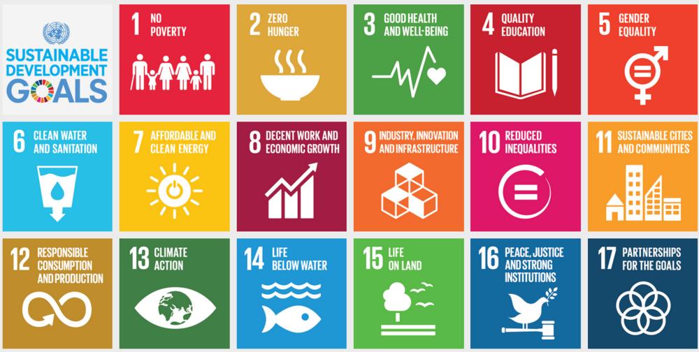 Align_UN Sustainable Dev Goals.png