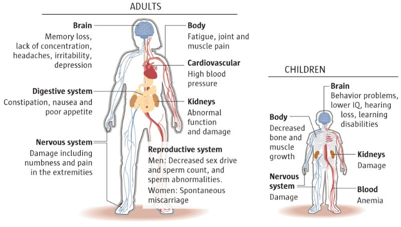 Affects of lead on the body.png
