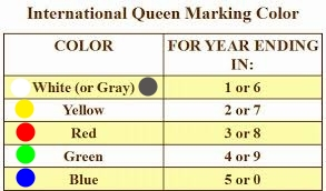 International queen marking color.jpg