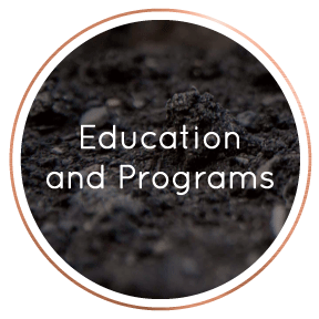 LocalBusinessDirectory-EducationandPrograms