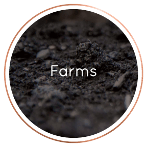 LocalBusinessDirectory-Farms