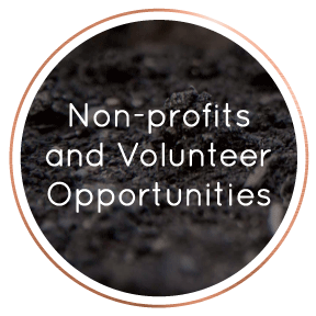 LocalBusinessDirectory-Non-profitAndVolunteering