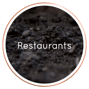 LocalBusinessDirectory-Restaurants