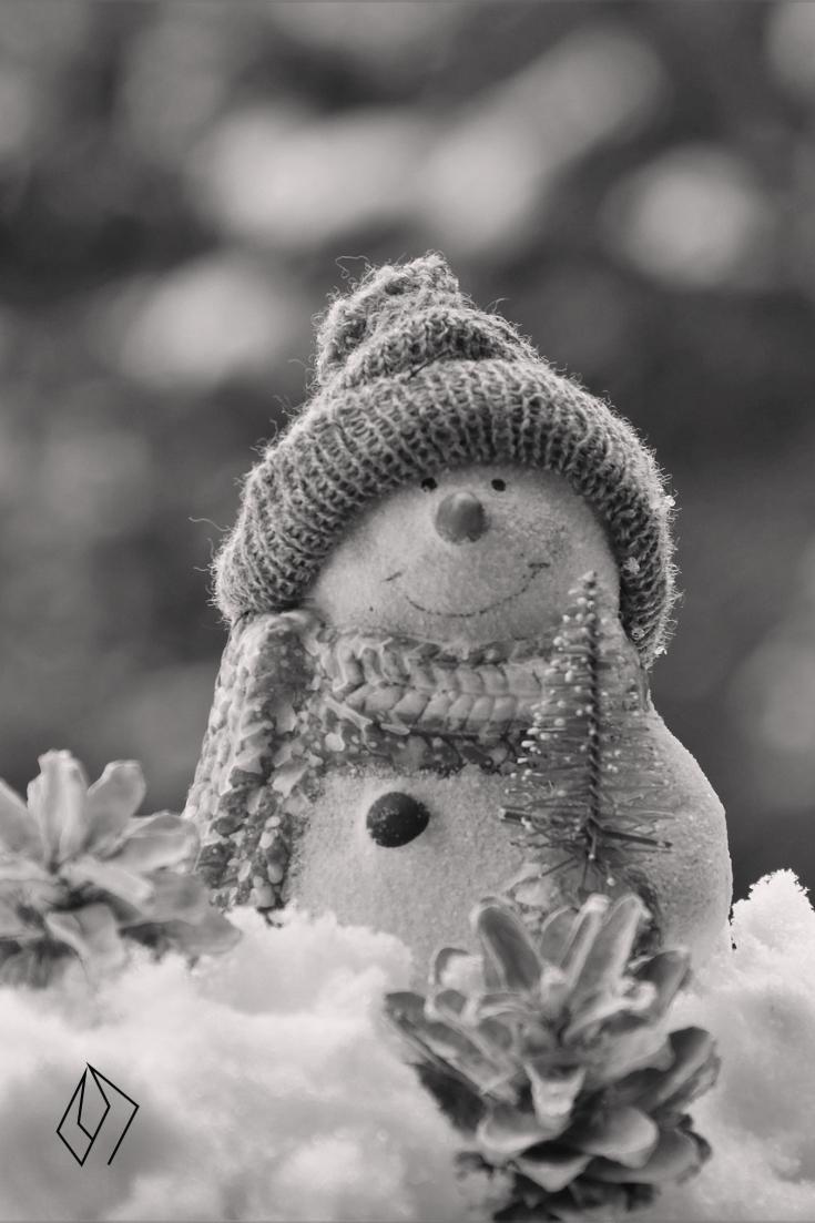 #snow#bunny.jpg