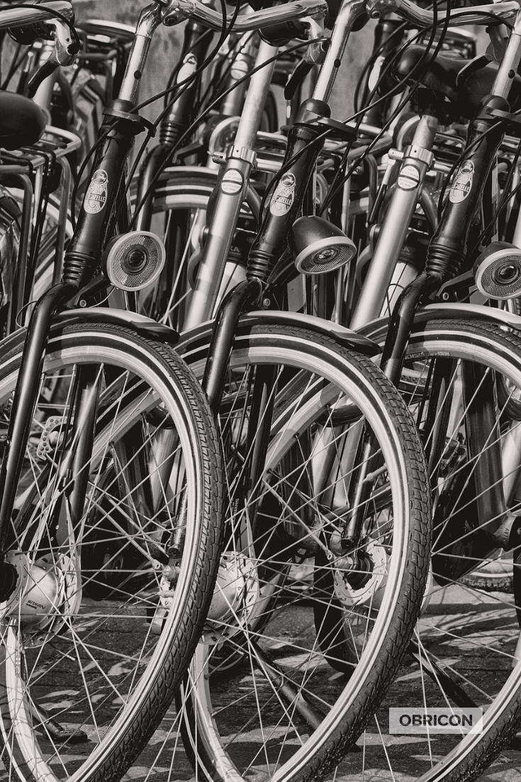 #bikes.jpg