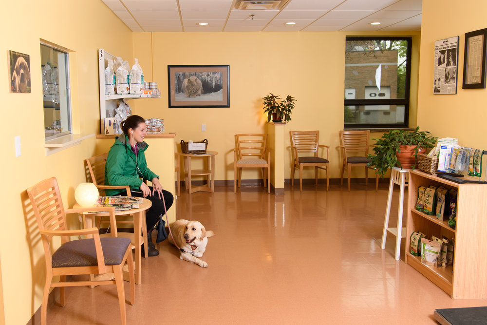 Our bright and inviting waiting room features a retail area, comfortable seating, and informational material for you to enjoy