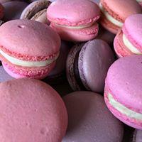 Pink vanilla and chocolate.jpg