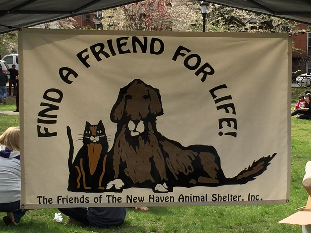 Banner--Wooster Square Cherry Blossom Festival 2016